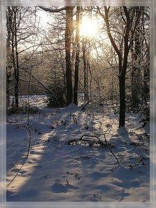 Bilderforum Winter 08 01 2009 mit Sammy P1110626(c) PPf.jpg