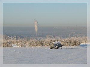 Bilderforum Winter 08 01 2009 mit Sammy P1110663(c) PPf.jpg