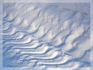 Bilderforum Winter 08 01 2009 mit Sammy P1110822(c) PPf.jpg