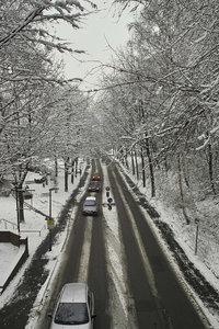 Winter-SD14 - SDIM3388.jpg