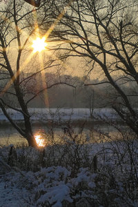 Winter-SD10 - IMG05506.jpg