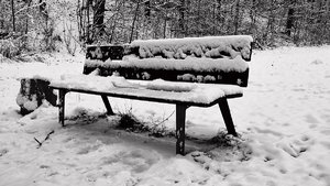 Winter-SD14 - SDIM3397_1-1x.jpg