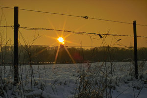 Winter-SD10 - IMG05508.jpg