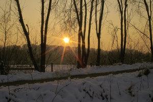 Winter-SD10 - IMG05510.jpg