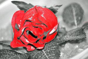 Rose_web2.jpg