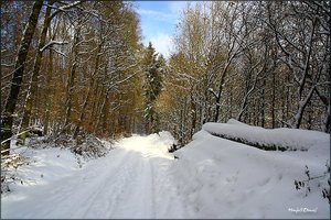 Schnee_5.jpg