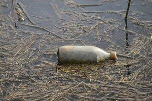 Flaschen-_SD10 - IMG06253.jpg