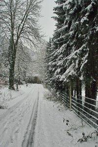 Pott_Winter_SD14 - SDIM3297.jpg