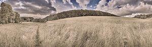 500k_SDIM4614 Panorama2.jpg