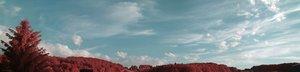 500k_SDIM4808 Panorama.jpg