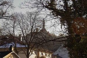 Bilderforum IMG04940 (c) PPf.jpg