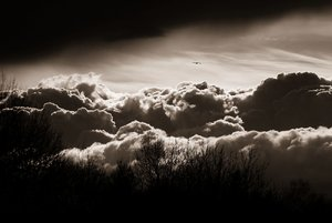 Wolken_bw_klein.jpg