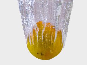Mandarine 1.jpg