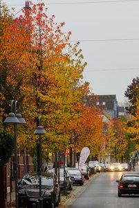 Herbsttag in Bedburg 1.jpg