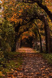 Herbsttag in Bedburg 2.jpg
