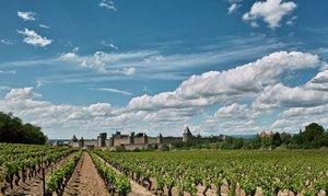 1_Carcassonne_105.jpg