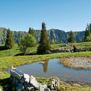 Schweiz 2009