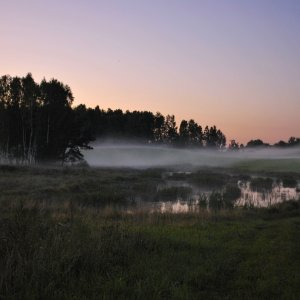 Morgennebel in den Masuren