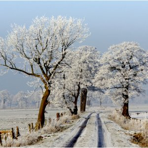 Friesland im Winter