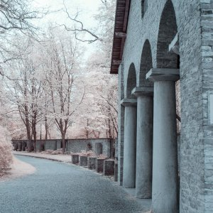 Alter Südfriedhof (Pestfriedhof) München in Infrarot