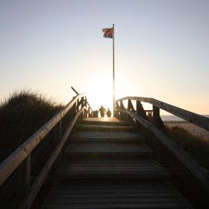 Der Abendsonne entgegen auf der Himmelsleiter am Norddorfer Strand auf Amrum