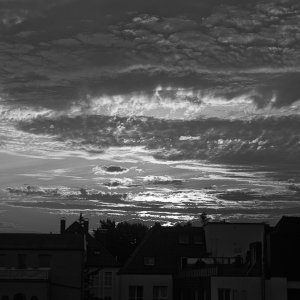 Am frühen Morgen ( 2 )