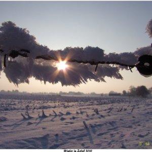 Winter in Zetel