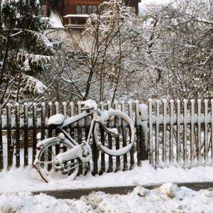 Ein ganz normaler Winter