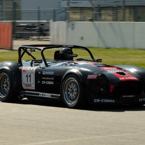 Shelby Cobra 289 Racing