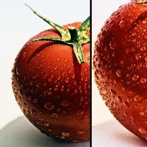 Tomaten FT