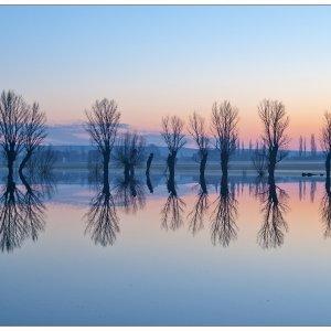 Überflutungsgebiet [Kölleda Thüringen]