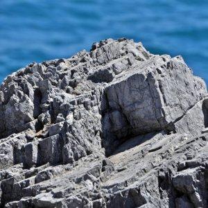 Ein Fels in der Brandung