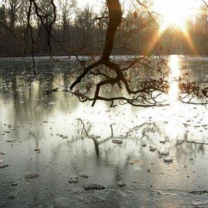"""""""Eisige Kälte in der Abendsonne"""""""