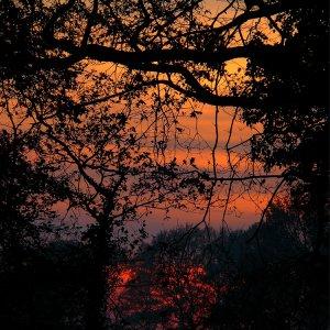 Schöner Herbstabend2