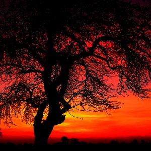 Schöner Herbstabend 3