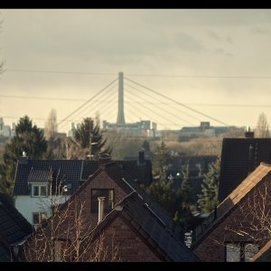 Düsseldorf - Impressionen nach dem Sturm