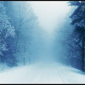 Winter im Böhmerwald