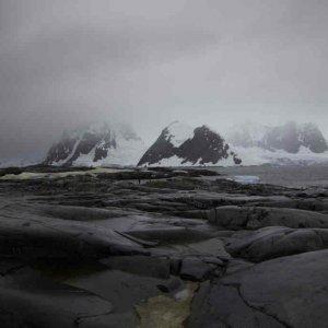 Antarktis und Oman - ein paar heimsiche Fotos