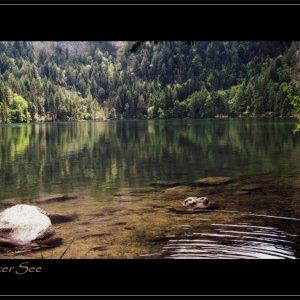 Gleinker See