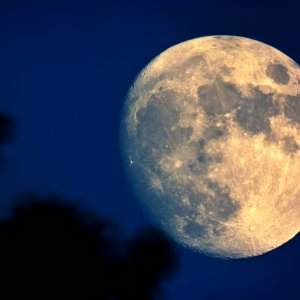 Rubinar - Mond