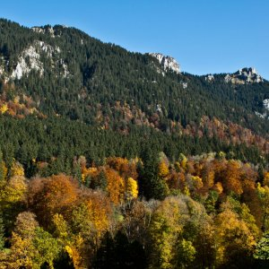 Indian Summer in Oberbayern