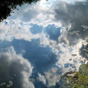 Wasserspiegel(ung)