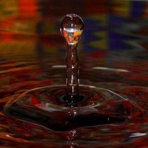 Wunderwelt Wasser I