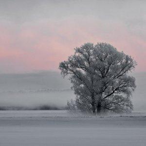 Erinnerungen: Winter ist möglich ;-)