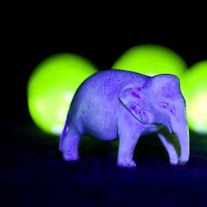 Die Legende vom lila Elefanten
