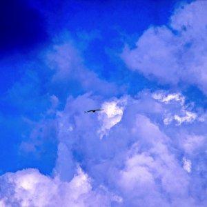 ...bald in den Wolken